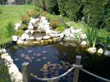 New pond with feature lighting