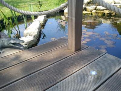 New pond decking lights